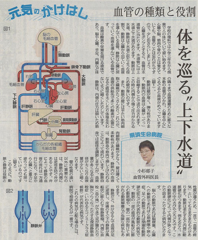2018年5月3日 日刊県民福井